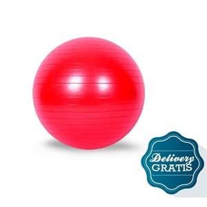 Imagen de Pelota inflable para ejercicios + un mes de diarios de día domingo